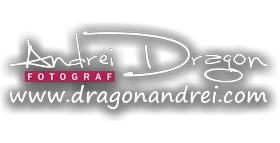 Andrei Dragon